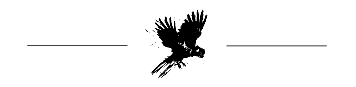 Bird and Barrel Wines Logo with Black Cockatoo